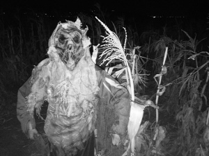 scarecrow-andelinfamilyfarm-300x225